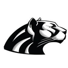 Dakota Valley High School logo