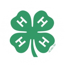 Woodbury County 4-H logo