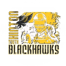 Hinton Youth Sports logo