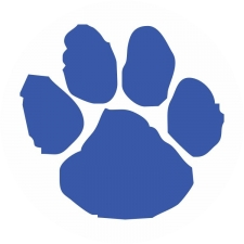 Woodbury Central High School logo